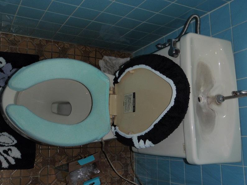 トイレ詰まり修理 トイレ修理工事 排水詰まり修理  前橋市